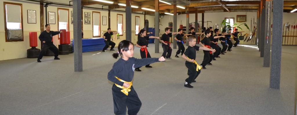 Kids Kung Fu Class
